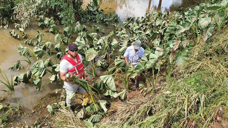 Evalúan daños en zona de Bilwi tras paso de Eta Managua. Radio La Primerísima