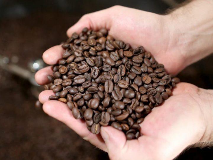 El Salvador reporta disminución de exportaciones de café