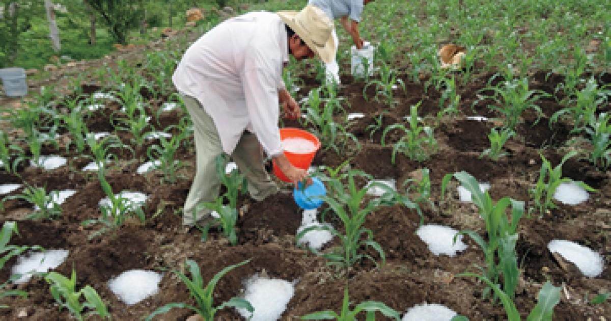 No hubo daños a cultivos en una comunidad en Matagalpa