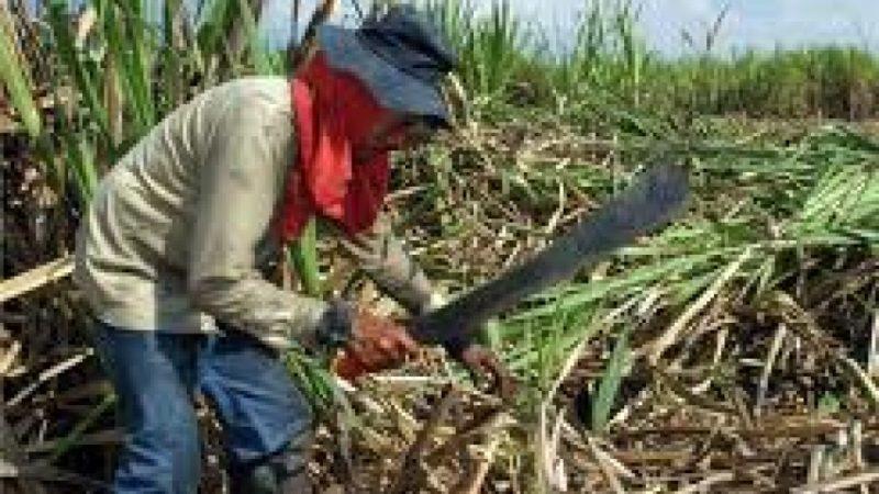 Aguaceros destruyeron caminos hacia ingenios Managua. Por Douglas Midence/ Radio La Primerísima