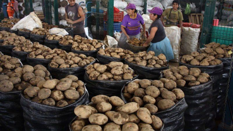Sube precio de la papa en mercados Managua. Por Jaime Mejía/Radio La Primerísima