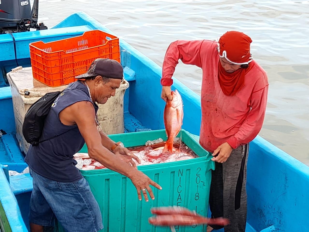 Activan venta de mariscos en Bilwi Managua. Por Danielka Ruíz/Radio La Primerísima