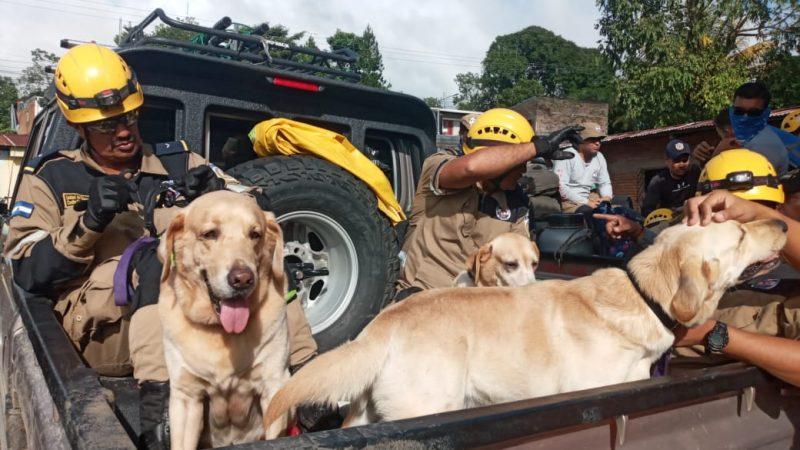 Sigue búsqueda de cadáveres en macizo de Peñas Blancas Managua. Radio La Primerísima