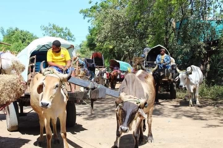 Fieles devotos de Cristo Negro rumbo a Santuario en El Sauce Managua. Radio La Primerísima