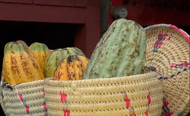 Realizan carnaval del cacao en Río San Juan Managua. Radio La Primerísima