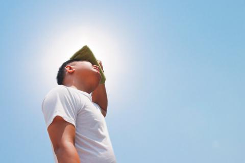 2020 ha sido uno de los años más calurosos Agencia EFE