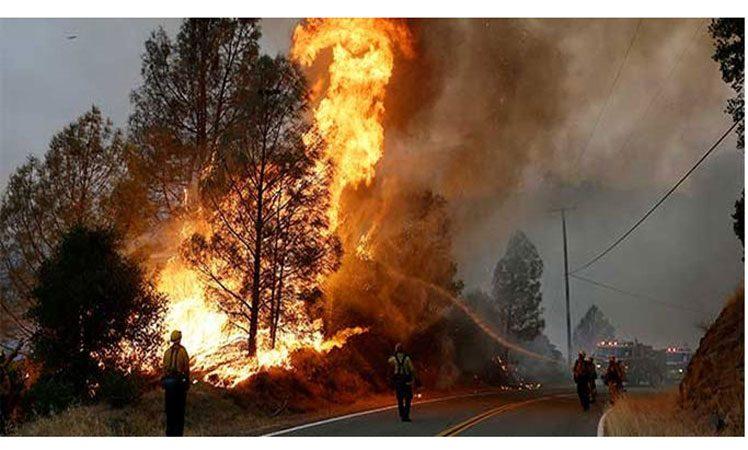 Incendio forestal en Chile arrasa más de dos mil hectáreas Santiago de Chile. Prensa Latina