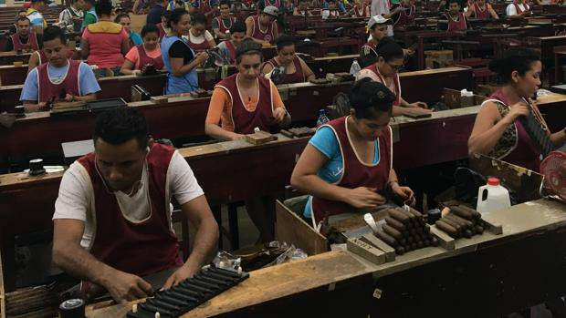 Exportaciones de tabaco superan 25 millones de dólares Managua. Radio La Primerísima