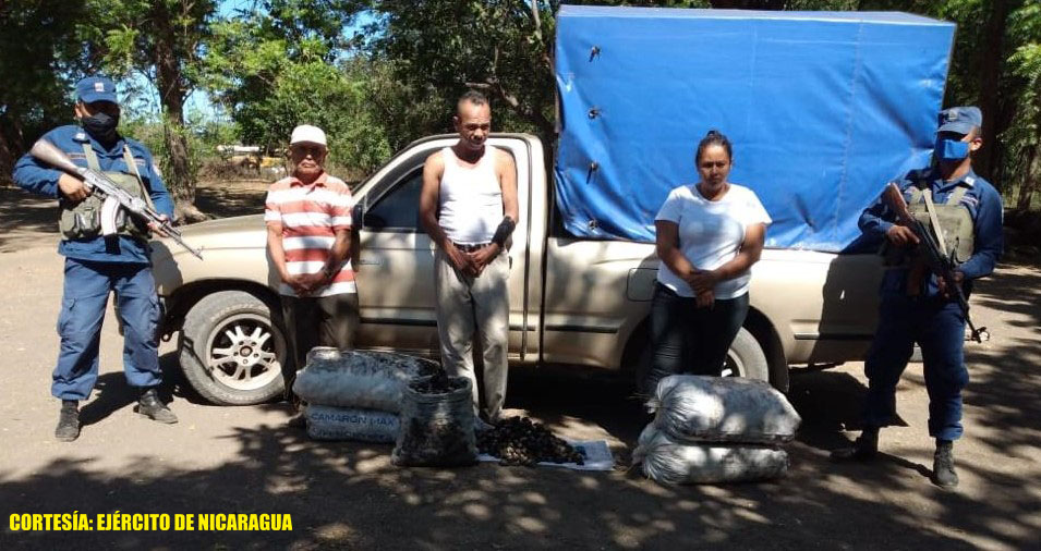 Retienen a traficantes de conchas negras en Chinandega Managua. Radio La Primerísima