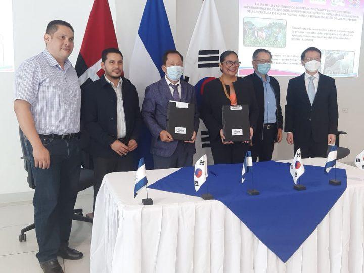 Corea del Sur apoyará mejoramiento del cultivo de ajonjolí