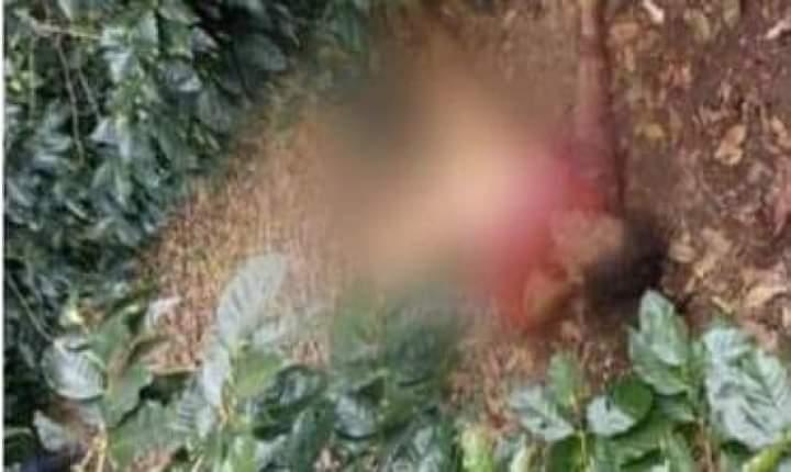 Detienen a presunto asesino de mujer en San Sebastián de Yalí Managua. Jerson Dumas/ La Primerísima