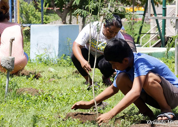 Realizan jornada de reforestación en Moyogalpa