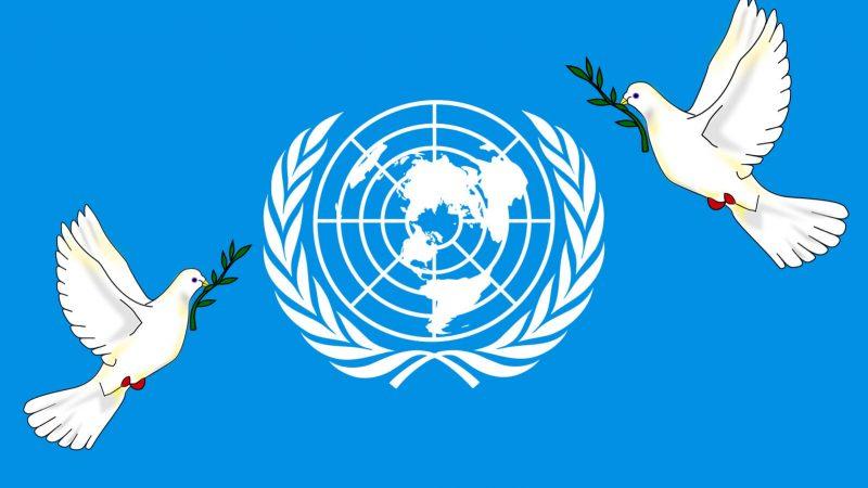 Despotismo y la Carta de la ONU Por Sergio Rodríguez Gelfenstein | Misión Verdad, Venezuela