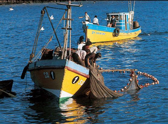 INPESCA impulsa plan para rehabilitar sector pesquero Managua. Por Jaime Mejía/Radio La Primerísima