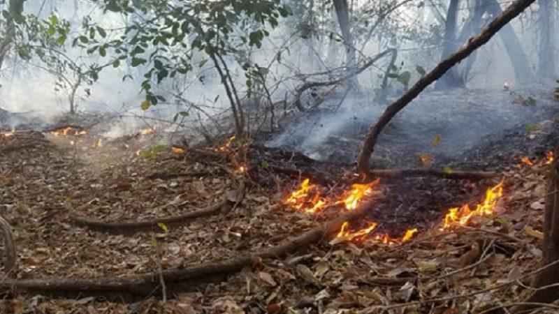 Registran 7 puntos de calor en Nicaragua Managua. Radio La Primerísima