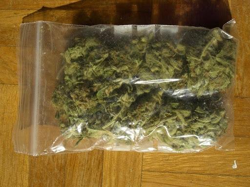 Incautan 72 libras de marihuana en Siuna y Bonanza Managua. Jerson Dumas/ Radio La Primerísima