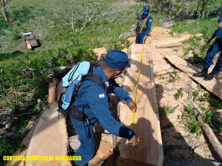 Retienen a ciudadanos que transportaban madera ilegal