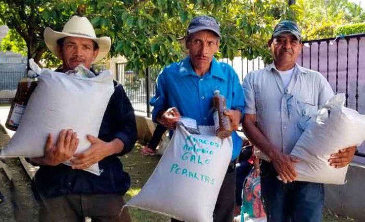 Entregarán 10 mil bonos productivos de distintos rubros Managua. Radio La Primerísima