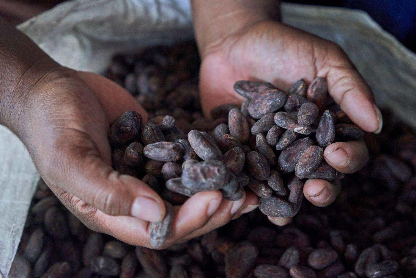 Miles de familias emprendedoras han mejorada calidad de vida Managua. Radio La Primerísima