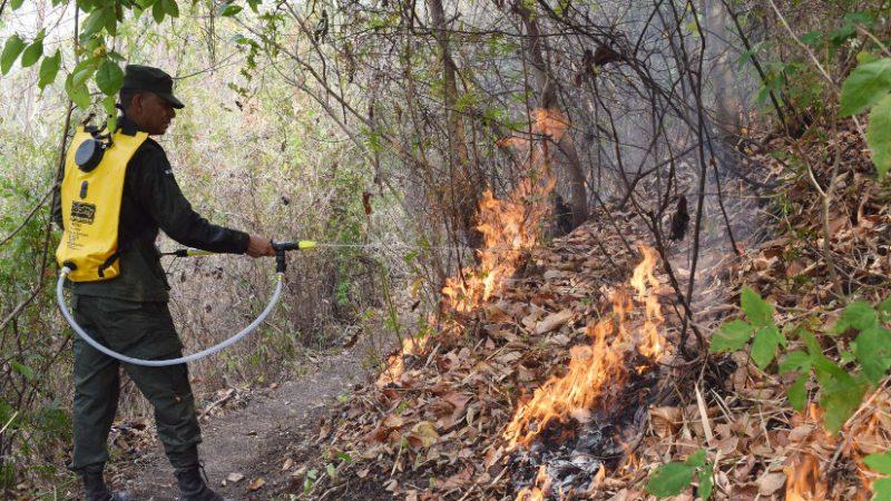 Sofocan incendios forestales en distintas zonas del país Managua. Radio La Primerísima
