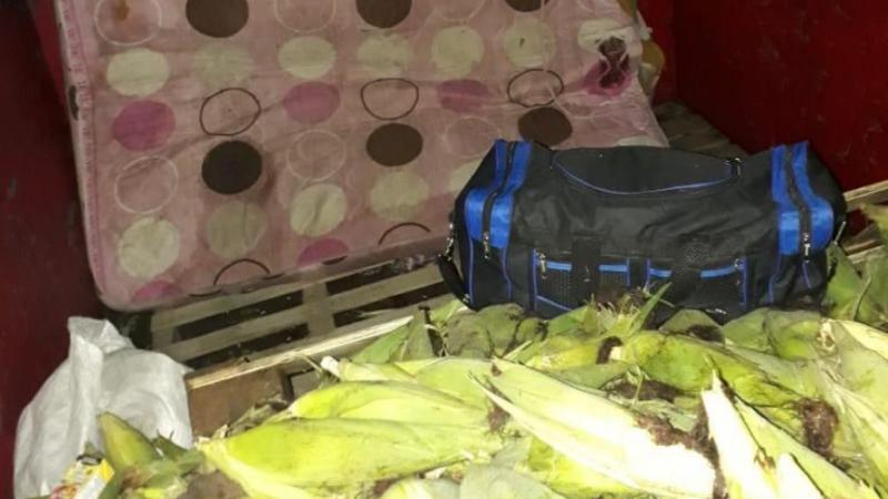 Encuentran a nicaragüenses ocultos en un camión en Panamá Managua. Radio La Primerísima