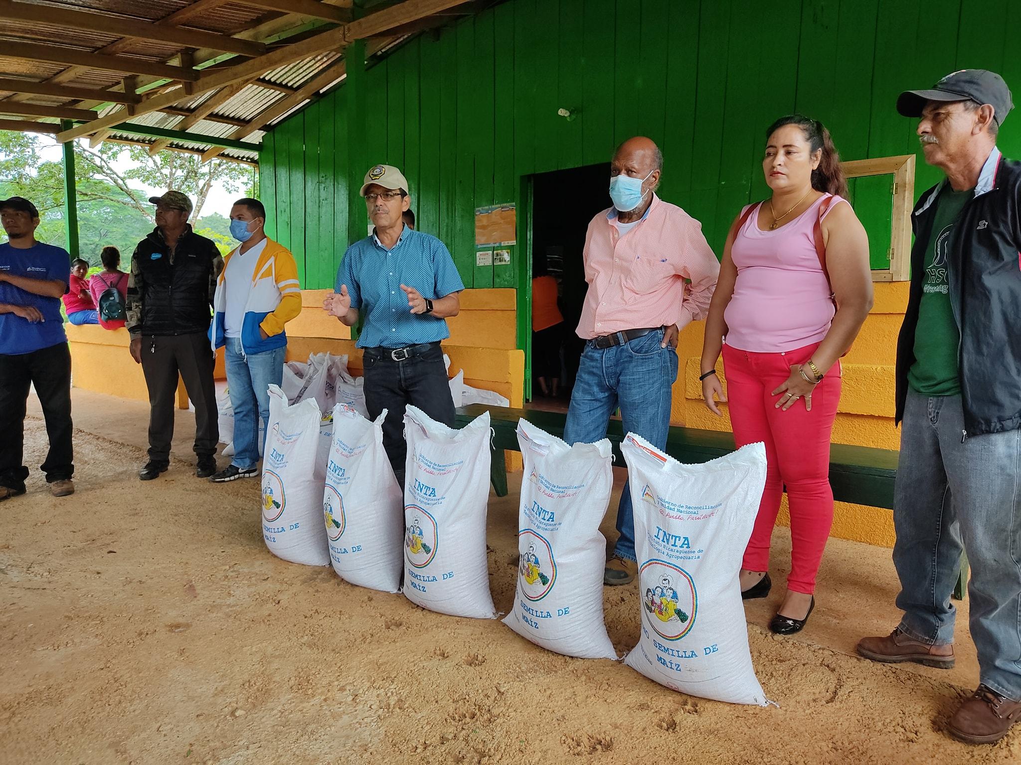 Productores de Bluefields reciben bonos de maíz Managua. Radio La Primerísima