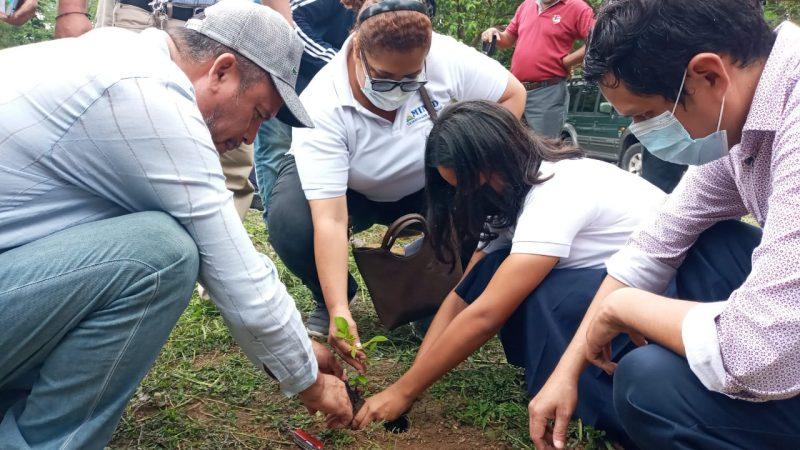 Lanzan Cruzada de Reforestación en Carazo Manuel Aguilar/ Radio La Primerísima