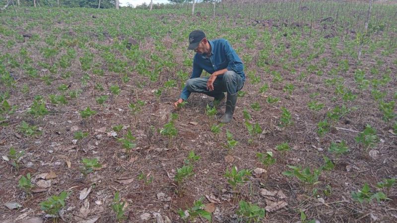 La Nicaragua actual de vigor y de gloria Por Faustino Torrez Arauz | Blog Friends ATC