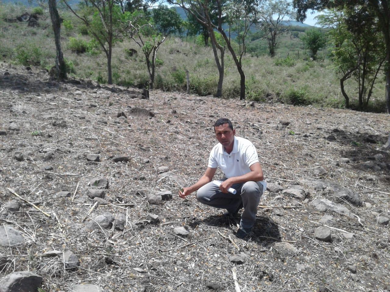 Treinta manzanas de frijol y maíz se perdieron por falta de lluvias en Matagalpa Managua. Radio La Primerísima