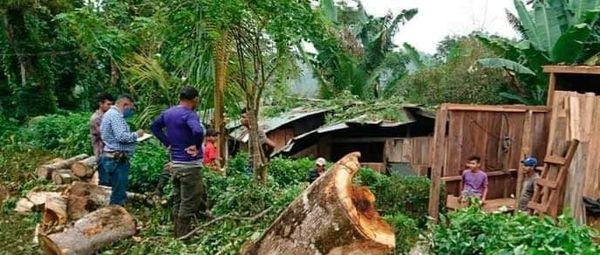 Caída de árbol deja dos casas destruidas en Matiguás Managua. Radio La Primerísima