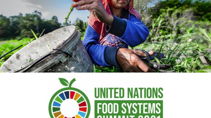 Las multinacionales se adueñan de la cumbre por la alimentación Por Verónica Villa Arias | Agencia ALAI, Ecuador