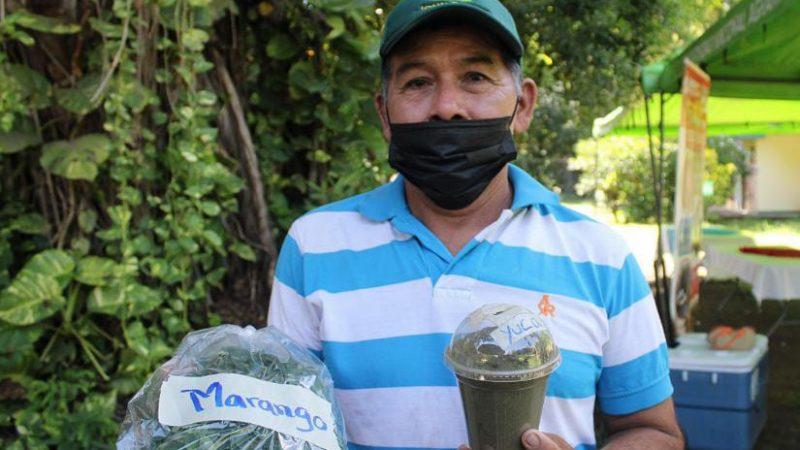 Destacan valores nutritivos del marango Managua. Radio La Primerísima